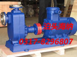 防爆输油泵