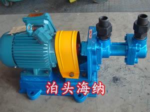 螺杆式高压柴油泵